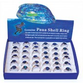 AR6568 - RING TRAYS PAUA SHELL MENS - 36 Rings (3 dozen) in a display tray