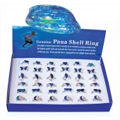 SRPAUA - RING TRAYS PAUA SHELL SHAPES - 36 Rings (3 dozen) in a display tray